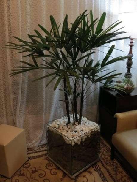 40. Cachepot de vidro com palmeira em sala de estar. Foto de Mercado Livre