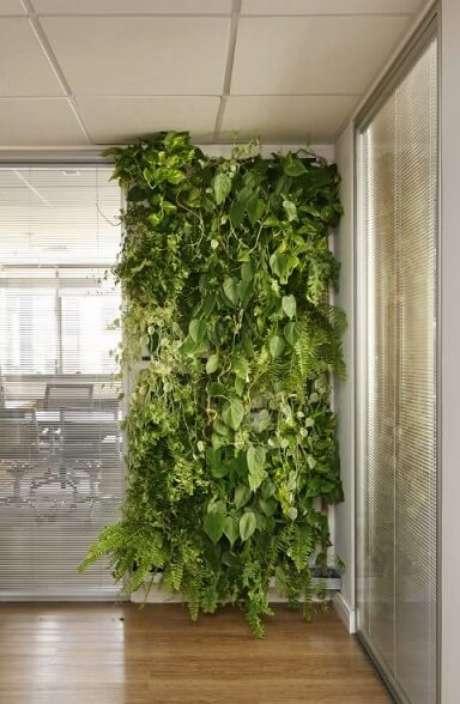 2. Se antes era só uma parede branca, agora é cheia de verde e de textura. Projeto de Arq Design