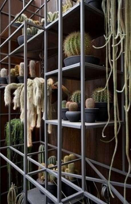61. Estante de aço com jardim de cactos. Projeto de Sandra Moura