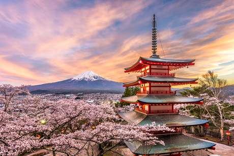 Fuji,na primavera, com flores de cerejeira