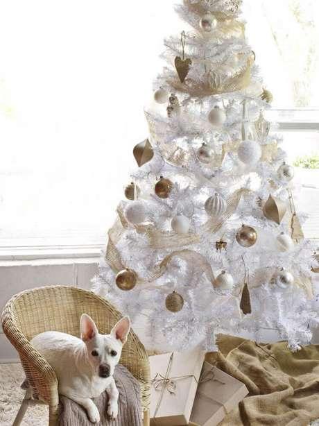 33. Linda decoração com árvore de natal branca e dourada – Foto: Chrismast Cards Ideas
