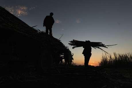 Homens carregam cana-de-açúcar após colheita 30/12/2010 REUTERS/Oswaldo Rivas