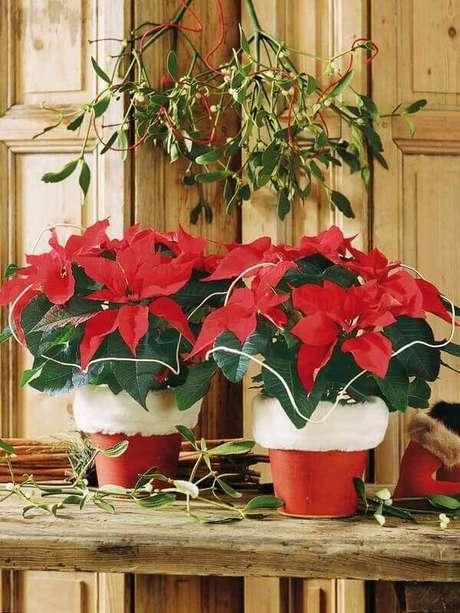 9- A poinsétia ou flor estrela de natal pode ser coloca sobre mesas ou aparadores. Fonte: Decoração e Invenção