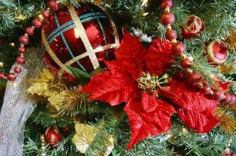 43- A flor de natal artificial é um lindo enfeite para árvore. Fonte: Getty Images