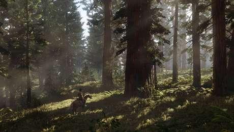 A Rockstar Games ainda não deu muitos detalhes de como será o modo online de 'Red Dead Redemption 2', só a informação que ele será lançado em novembro