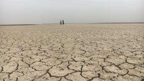 Agricultores sofrem com frequentes perdas causadas pela seca