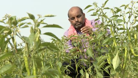 Vijendra Tadvi diz que o governo deveria investir em infraestrutura para a agricultura, não em estátuas