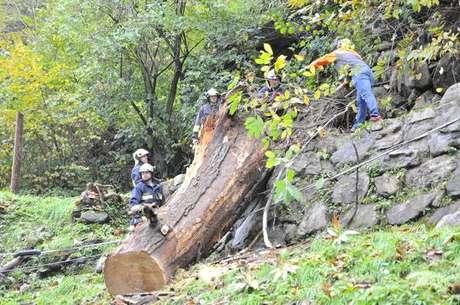 Tragédia ocorreu em Lillianes, na região de Vale de Aosta