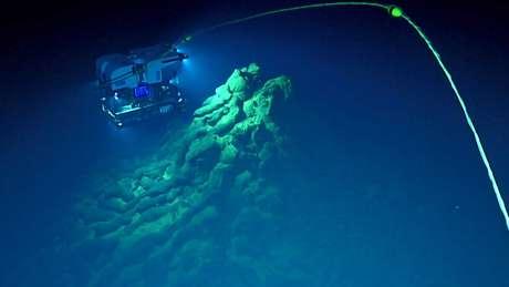 Imagens feitas por veículos robóticos usados para explorar a Fossa das Marianas, área mais profunda do planeta, permitiram a descoberta