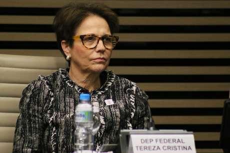 A deputada Tereza Cristina, escolhida por Bolsonaro para comandar o Ministério da Agricultura