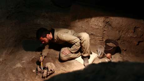 Parte dos fósseis estudados pelos pesquisadores foram encontrados no Brasil