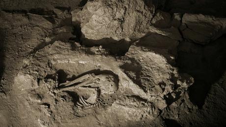 Dos esqueletos brasileiros, sete, com cerca de 9,6 mil anos, foram escavados no sítio arqueológicos Lapa do Santo, na região de Lagoa Santa, em MG