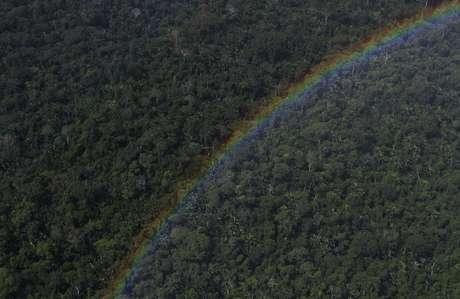 Floresta amazônica perto de Santarém, Pará 20/4/2013 REUTERS/Nacho Doce