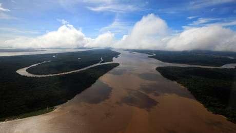 Para o projeto da Terceira Via Amazônica, ganhar dinheiro com a floresta é a melhor forma de preservá-la