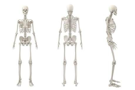 Tirando alguns sortudos, todos nós precisamos nos cuidar para prevenir a osteoporose ao envelhecer