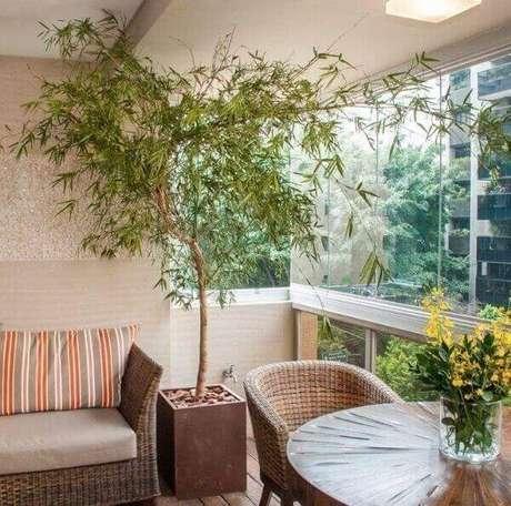 17- O bambu mossô é uma das plantas para dentro de casa que podem ser utilizadas para compor a decoração do canto da sala. Fonte: Pinterest