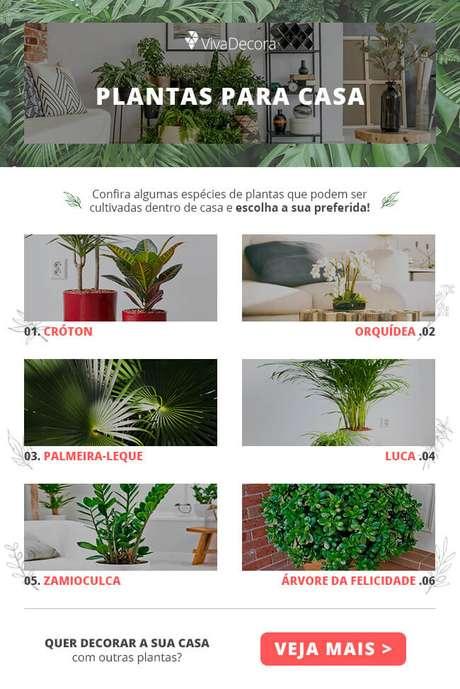 Infográfico – Plantas para Dentro de Casa