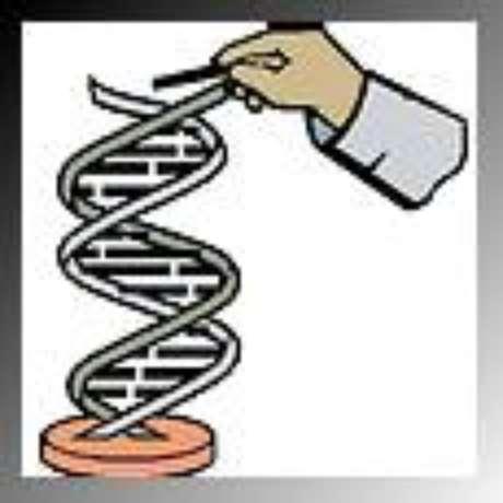 O DNA, a espiral da vida