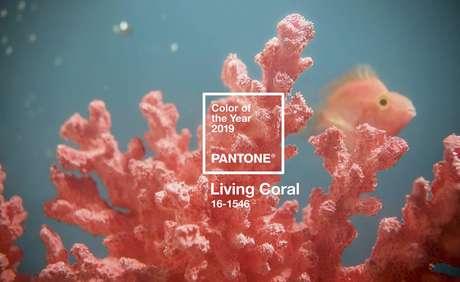 Living Coral é a aposta da Pantone para 2019.