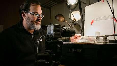 Junto a colegas, o professor de entomologia e biologia animal Andrew Suarez estudou a velocidade e as características mecânicas da formiga drácula