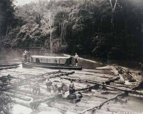 Balsas usadas para escoar madeira no rio Uruguai, na região Sul; mesma técnica é usada atualmente para transportar madeira pelos rios amazônicos.