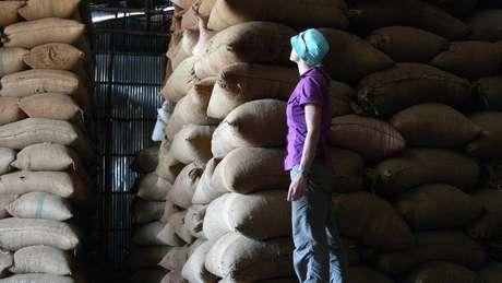 O café arábica é o mais consumido do planeta