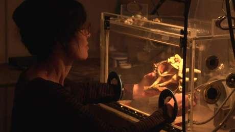 Agora, Gillian toma mais precauções com os materiais que utiliza nas esculturas