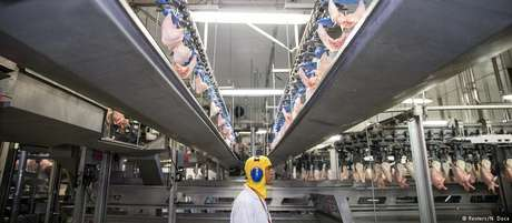 Arábia Saudita é maior compradora de frango brasileiro