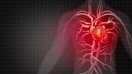 Apesar dos bons resultados, ainda vai demorar um tempo para que a molécula dê origem a um novo medicamento para insuficiência cardíaca