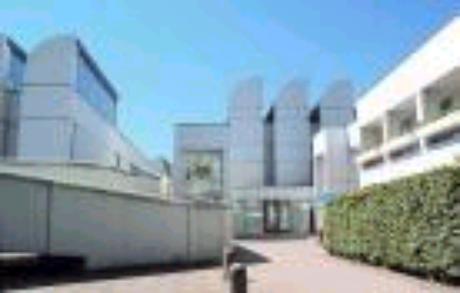 Bauhaus: formas geométricas, linhas retas