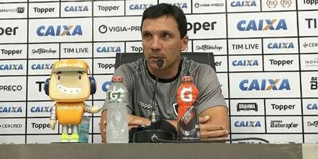 Zé Ricardo quer time focado na Sul-Americana (Foto: Divulgação/Botafogo)