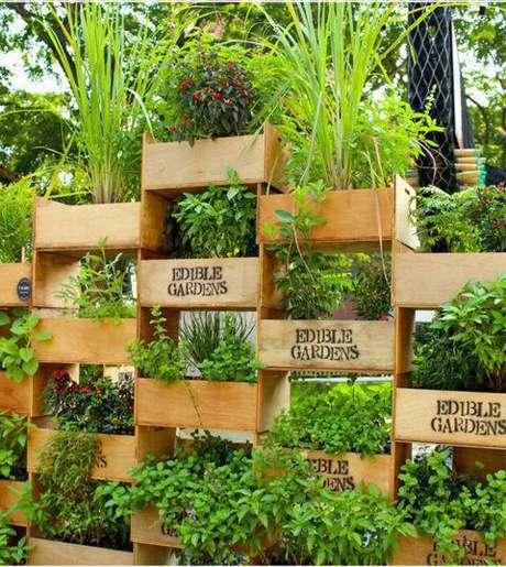 14. Horta vertical em caixotes de madeira com diversos tipos de plantas
