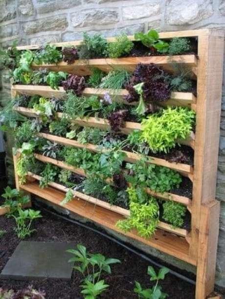 57. Horta vertical em estrutura de madeira própria. Foto de Pinterest