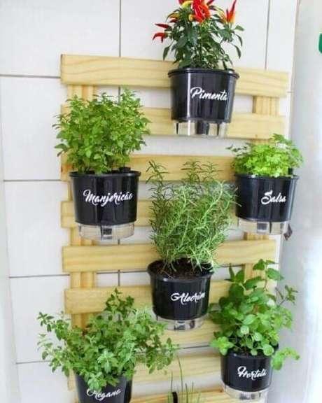 37. Colocar os nomes das plantas nos vasos ajuda a identificá-las de cara. Foto de MSN