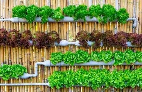59. Horta vertical em estrutura feita por canos. Foto de Santificarnos
