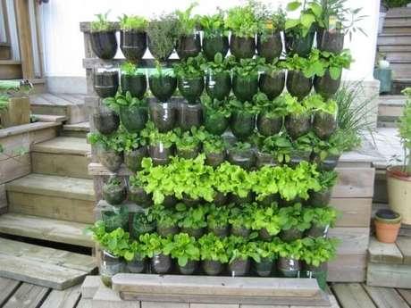 34. Mais uma forma de usar garradas PET para fazer uma horta vertical. Foto de Gayo Maxx