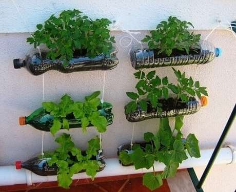 32. Usar garrafas PET para fazer a sua horta em casa é uma ótima forma de reaproveitar esse material. Foto de Garden Decors