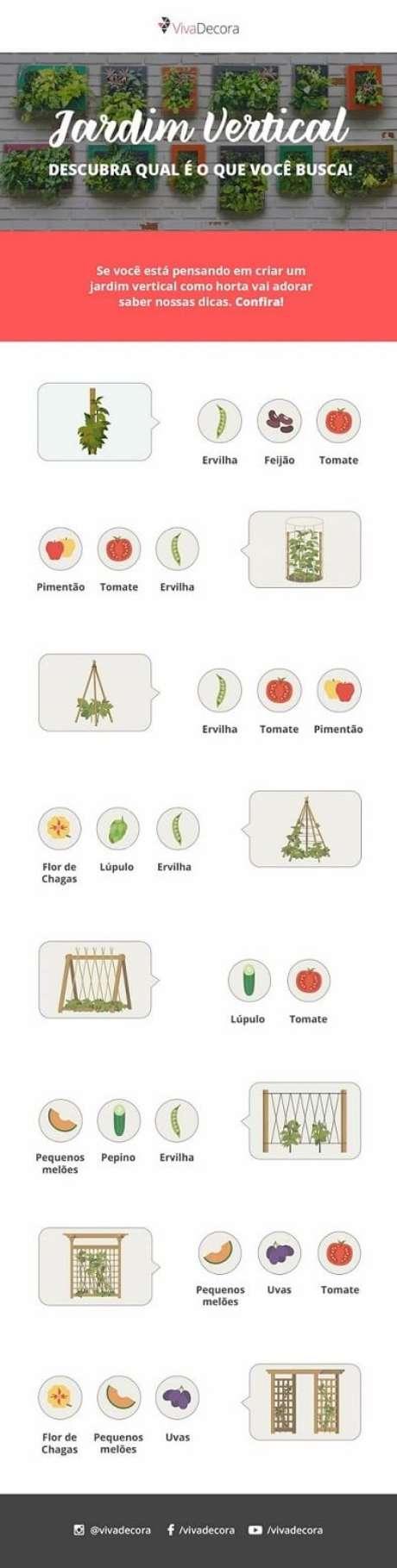 15. Infográfico – Dicas de plantas para horta vertical