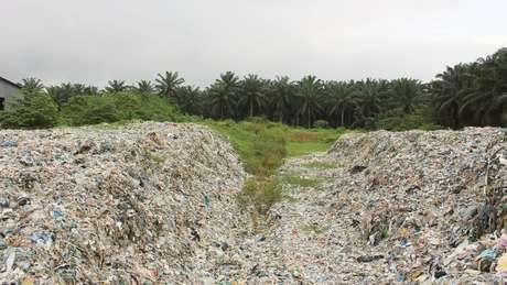 Resíduos são despejados a poucos metros de uma plantação de palmeiras em Jenjarom