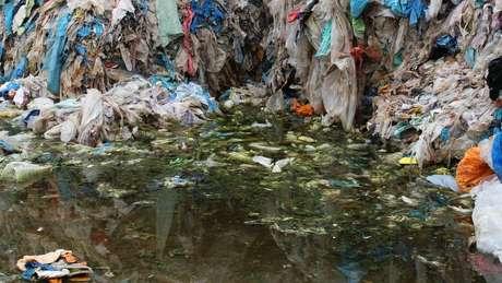 Resíduo em decomposição é depositado em água coberta de musgo em usina ilegal de reciclagem de plástico