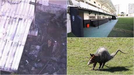 Alojamento do Ninho do Urubu ficou destroçado, e o Caio Martins, cedido ao Botafogo, sofreu interdição da polícia. Além disso gambás e ratos já 'passearam' nas Laranjeiras e São Januário (Foto: Reprodução/TV Globo/Lancepress!)
