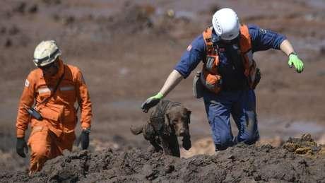 Famílias de vítimas não encontradas em Brumadinho podem solicitar o reconhecimento de morte presumida, diz Defensoria Pública