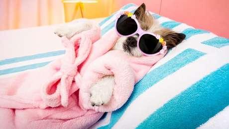 O período controlado de descanso não precisa ser elaborado. Bastaria um local tranquilo para relaxar corpo e mente