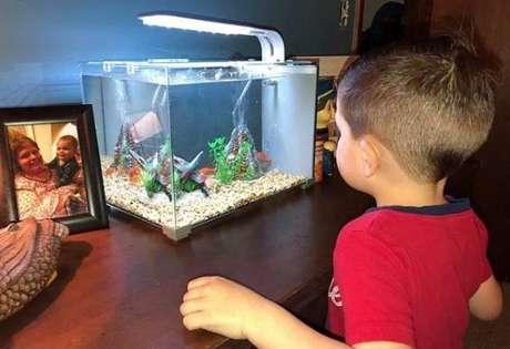 O pequeno Everett sempre observava o peixinho em seu aquário até ter a ideia de se aproximar ainda mais dele.