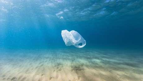 O plástico é visto como ameaça a animais de diversas espécies - eles engolem resíduos acidentalmente ou os confundem com comida