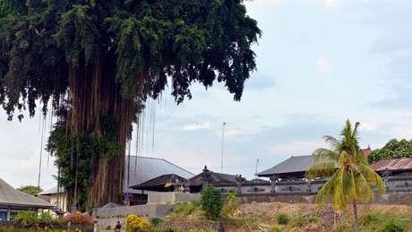 A kata kolok é usada apenas na aldeia de Bengkala, Bali, onde uma proporção extraordinariamente grande da população nasceu surda