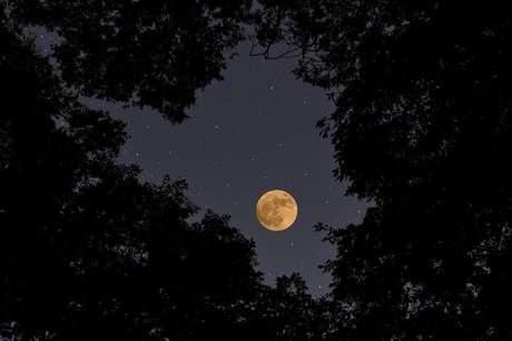 Quais signos serão mais impactados pela Lua Nova do dia 05?