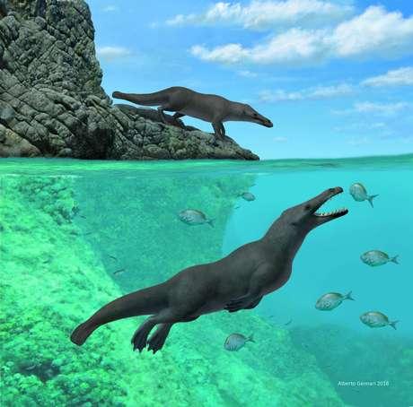 """Ilustração do recém-descoberto """"Peregocetus pacificus"""",  que viveu 43 milhões de anos atrás no Peru, segundo cientistas Alberto Gennari/Divulgação via REUTERS"""