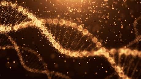 O nosso DNA contém as instruções para o funcionamento do corpo humano