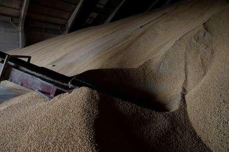 Estoque de milho exportado pelo Brasil 21/02/2018 REUTERS/Henry Romero